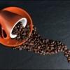 賞味期限切れのコーヒー