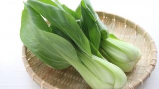 チンゲン菜を冷蔵庫でおいしく保存